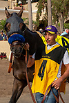 """DEL MAR, CA  JULY 28: #4 Ollie's Candy, ridden by Kent Desormeaux, in the paddock before the Clement L Hirsch Stakes (Grade 1) a Breeders' Cup """"Win and You're In"""" Distaff Division (Photo by Casey Phillips/Eclipse Sportswire/CSM)"""