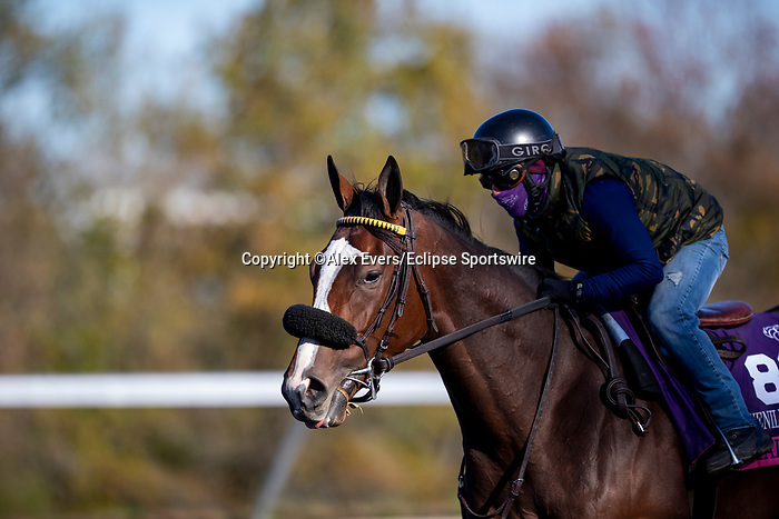 November 3, 2020: Royal Approval, trained by trainer Wesley A. Ward, exercises in preparation for the Breeders' Cup Juvenile Fillies Turf at Keeneland Racetrack in Lexington, Kentucky on November 3, 2020. Alex Evers/Eclipse Sportswire/Breeders Cup