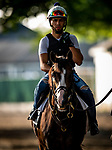 JUNE 06: Bricks and Mortar prepares for The Manhattan Stakes at Belmont Park in Elmont, New York on June 06, 2019. Evers/Eclipse Sportswire/CSM