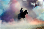 A horse of the Royal Dutch cavallery rides through colored smoke on the beach of Scheveningen in preparation of Budget Momerandum day in the Netherlands