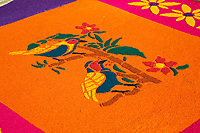 Antigua, Guatemala. Detail of an  alfombra (carpet) of colored sawdust decorating the street in advance of the passage of a procession during Holy Week, La Semana Santa.  The alfombra will be finished only a couple of hours before the passage of the procession, after which the remains will be quickly swept away by municipal street sweepers.