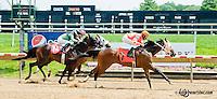 Echo Bye winning at Delaware Park on 6/12/13
