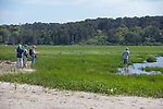 Judith, Mary, Diane & Bob On Horseshoe Crab Survey
