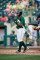 Fort Wayne TinCaps catcher Luis Campusano (4) at bat during a game against the West Michigan Whitecaps on May 17, 2018 at Parkview Field in Fort Wayne, Indiana.  Fort Wayne defeated West Michigan 7-3.  (Mike Janes/Four Seam Images)