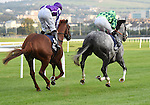The Grey Gatsby (no. 7), ridden by Ryan Moore and trained by Kevin Ryan, wins the group 1 Irish Champion Stakes for three year olds and upward on September 13, 2014 at Leopardstown Racecourse in Leopardstown, Dublin, Ireland.  (Bob Mayberger/Eclipse Sportswire)