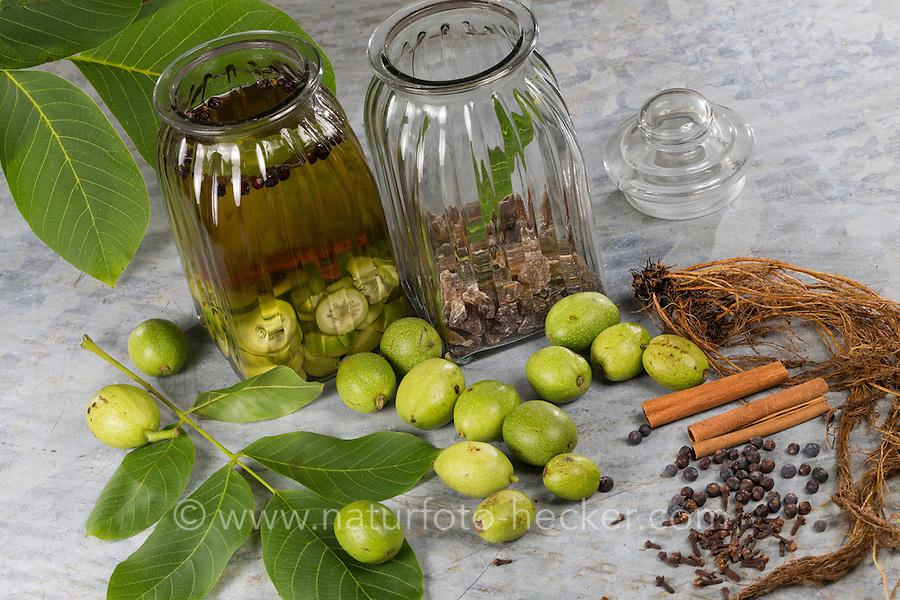 Walnuß-Schnaps, Walnuss-Schnaps, Schnaps mit Walnuß, Walnuss, Walnuß, Wal-Nuss, Wal-Nuß, Juglans regia, Walnut. Heilschnaps, Heilschnäpse, Kräuterschnaps, Kräuterschnäpse, Likör, Liköre, Kräuterlikör, Magenbitter, Wildfruchtschnaps, Fruchtschnaps, Früchte, Wildfrüchte einlegen, angesetzt. Zutaten: unreife Walnuss, Gewürznelke, Wacholderbeeren, Zimt, Kandis, Kandiszucker, Nelkenwurz-Wurzeln Geum urbanum. bitters, schnapps, liquor, cordial
