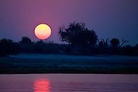 Sunset along the banks of the Chobi River, Capri Strip, Namibia