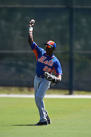 New York Mets Champ Stuart (29) during practice before a minor league spring training game against the Miami Marlins on March 30, 2015 at the Roger Dean Complex in Jupiter, Florida.  (Mike Janes/Four Seam Images)