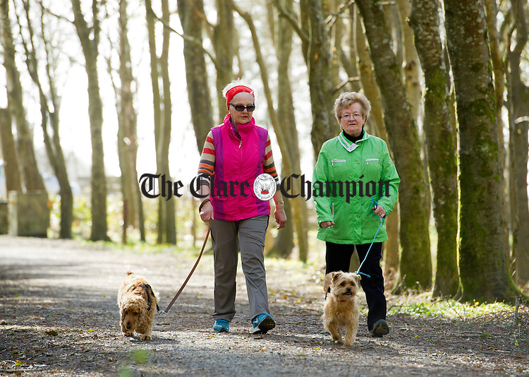 Tess O Shea, Breaffa and Moira Garry, Cooraclare walking their dogs in the Vandeleur woods at Kilrush. Photograph by John Kelly.