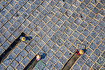 Tens of thousands of fish are laid out to dry in neat rows of boxes by Nguyen Tan Tuan