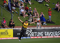 Logan Van Beek celebrates his spectacular catch during the men's Dream11 Super Smash cricket match between the Wellington Firebirds and Northern Knights at Basin Reserve in Wellington, New Zealand on Saturday, 9 January 2021. Photo: Dave Lintott / lintottphoto.co.nz