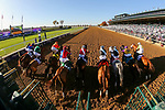 November 7, 2020 : Horses break out of the starting gate during the Longines Distaff on Breeders' Cup Championship Saturday at Keeneland Race Course in Lexington, Kentucky on November 7, 2020. Matt Wooley/Breeders' Cup/Eclipse Sportswire/CSM