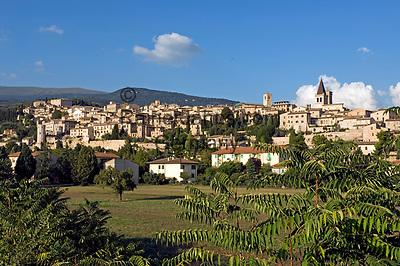 Italien, Umbrien, Spello: mittelalterliche Stadt mit Kirche Santa Maria Maggiore   Italy, Umbria, Spello: medieval town with church Santa Maria Maggiore