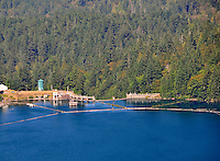 Glines Canyon Dam viewed from Lake Mills side, Olympic National Park, Washington State. Also called Upper Elwha River Dam.