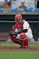 Auburn Doubledays catcher Onix Vega (7) during a NY-Penn League game against the Mahoning Valley Scrappers on August 27, 2019 at Falcon Park in Auburn, New York.  Auburn defeated Mahoning Valley 3-2 in ten innings.  (Mike Janes/Four Seam Images)