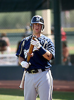 Taylor Green / Brevard County Manatees..Photo by:  Bill Mitchell/Four Seam Images