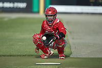 Johnson City Cardinals catcher Benito Santiago (31) warms-up his starting pitcher in the bullpen prior to the game against the Burlington Royals at Burlington Athletic Stadium on July 15, 2018 in Burlington, North Carolina. The Cardinals defeated the Royals 7-6.  (Brian Westerholt/Four Seam Images)