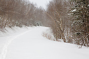 Snow covered forest road in the White Mountains, New Hampshire USA during the winter months