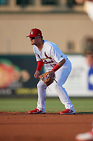 Palm Beach Cardinals second baseman Nick Dunn (12) during a Florida State League game against the Daytona Tortugas on April 11, 2019 at Roger Dean Stadium in Jupiter, Florida.  Palm Beach defeated Daytona 6-0.  (Mike Janes/Four Seam Images)