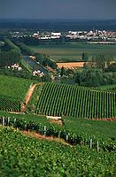 Europe/France/Champagne-Ardenne/51/Marne/Env de Cumières: le vignoble champenois de la vallée de la Marne et une écluse sur le canal latéral à la Marne