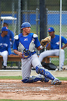 Toronto Blue Jays Javier Hernandez (20) during an instructional league game against the Philadelphia Phillies on September 28, 2015 at the Englebert Complex in Dunedin, Florida.  (Mike Janes/Four Seam Images)