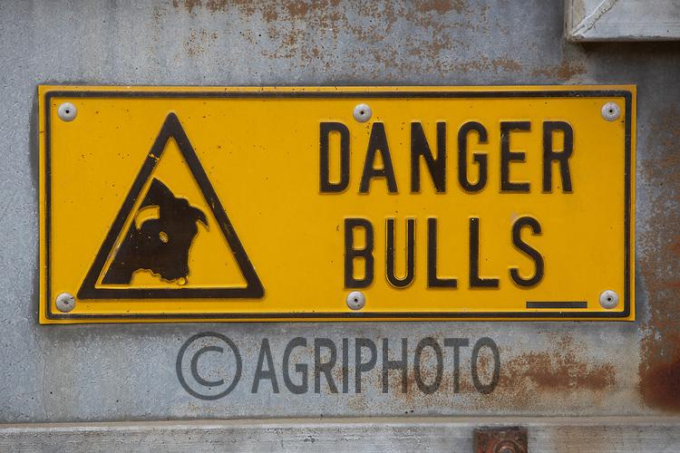 Danger Bulls Sign<br /> ©Tim Scrivener Photographer 07850 303986<br />      ....Covering Agriculture In The UK....