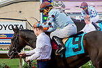 DEL MAR, CA  SEPTEMBER 2: #9 Yesterdayoncemore, ridden by Victor Espinoza, return to the connections after winning  the Del Mar Juvenile Fillies Turf on September 2, 2019, at Del Mar Thoroughbred Club in Del Mar, CA. ( Photo by Casey Phillips/Eclipse Sportswire/CSM)