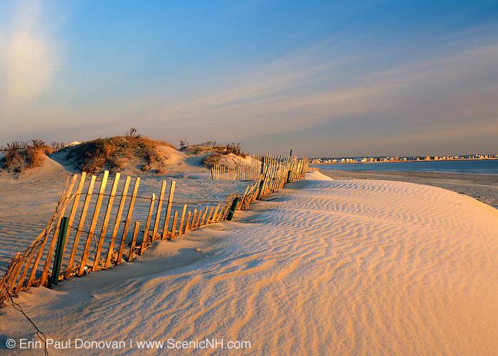 Sand dunes at Hampton Beach State Park at Hampton Beach, New Hampshire USA.
