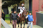 HOT SPRINGS, AR - JANUARY 15: Combatant #1, with jockey Ricardo Santana, Jr. aboard before the running of the Smarty Jones at Oaklawn Park on January 15, 2018 in Hot Springs, Arkansas. (Photo by Justin Manning/Eclipse Sportswire/Getty Images)