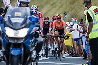 Matteo Trentin (ITA/CCC)<br /> <br /> Stage 8 from Cazères-sur-Garonne to Loudenvielle 141km<br /> 107th Tour de France 2020 (2.UWT)<br /> (the 'postponed edition' held in september)<br /> ©kramon