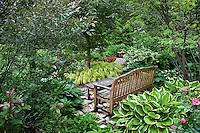 "Bench in lush secret garden with hostas; Olsen Garden, ""Wood's Walk"""