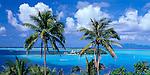 Bora Bora, French Polynesia:  Coconut Palm trees (Cocos nucifera) above the tropical blue waters of Bora Bora lagoon framing Motu Island