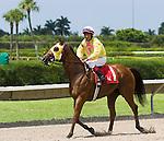 10 July 2010: Tahoe Warrior and Jockey Edgar Prado winning the Bob Umphrey Turf Sprint Handicap at Calder Race Course in Miami Gardens, FL.