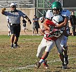 Football action. Linebacker smothers running back.
