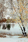 Autumn colored trees reflect in a pond along the St. Vrain Greenway trail in Longmont, CO