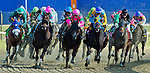 LAUREL, MARYLAND - OCTOBER 22: The field turns for home in the Maryland Million Starter Handicap on Maryland Million Day at Laurel Park on October 22, 2016 in Laurel, Maryland. (Photo by Scott Serio/Eclipse Sportswire/Getty Images)