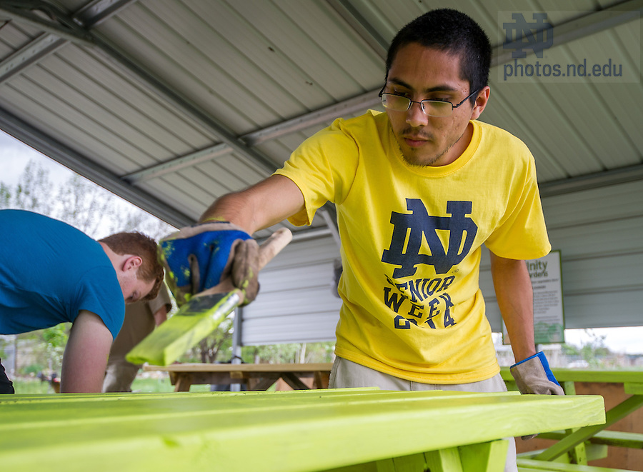 May 13, 2014; Junior Michael Martinez works on a service project at The Unity Garden in South Bend during senior week 2014.  The departing junior class helps arrange the service projects for the graduating seniors. Photo by Matt Cashore/University of Notre Dame