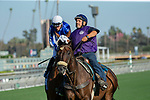 """ARCADIA, CA. SEPTEMEBER 29: #2 Tisbutadream, ridden by Tyler Conner, in the post parade of the Rodeo Drive Stakes (Grade l) """"Win and You're in Breeders Cup Juvenile Fillies Division"""" on September 29, 2018, at Santa Anita Park in Arcadia, CA. (Photo by Casey Phillips/Eclipse Sportswire/CSM)"""