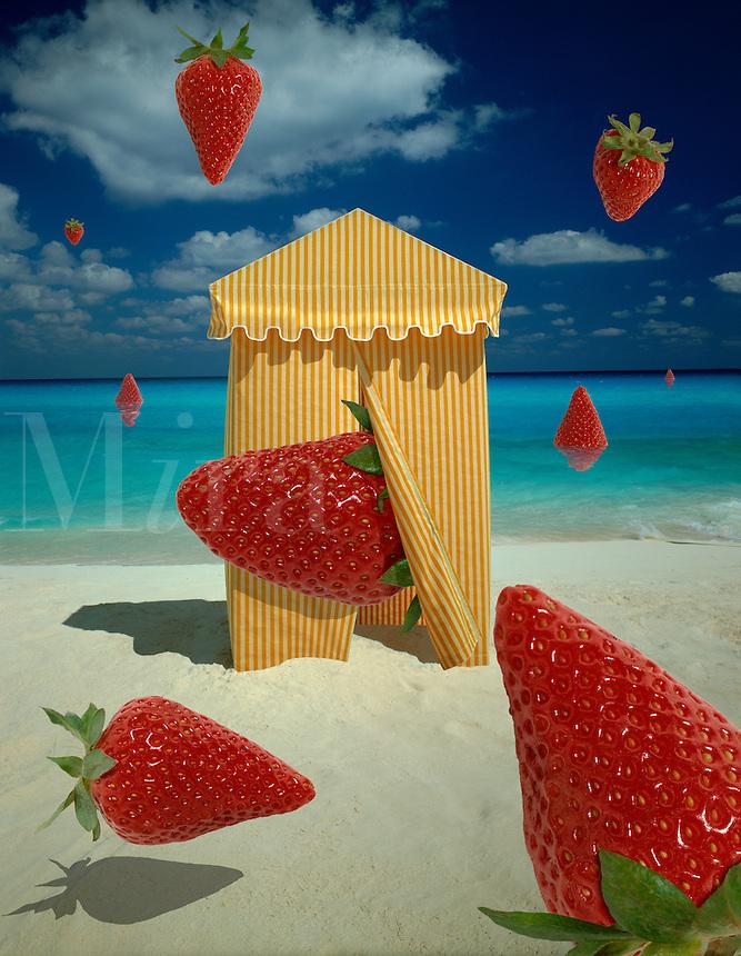 Digital illustration: Summer.