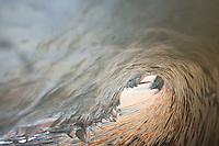 a toothy wave on the gaviota coast