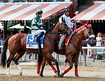 Still There in the post parade as Marley's Freedom (no. 7) wins the Ketel One Ballerina  Stakes (Grade 1), Aug. 25, 2018 at the Saratoga Race Course, Saratoga Springs, NY.  Ridden by  Mike Smith, and trained by Bob Baffert, Marley's Freedom finished 3  3/4 lengths in front of Still There (No. 3).  (Bruce Dudek/Eclipse Sportswire)