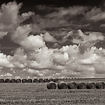 HARVEST #blackandwhite #B&W #black&white #monochrome #wisconsin #midwestmemoir #photograph #landscape #clouds #hay #haybails  #harvest #photography #field #farm #farmfield