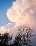 Germany, Baden-Wurttemberg, Black Forest: cumulus cloud lit by the setting sun | Deutschland, Baden-Wuerttemberg, Schwarzwald: von den letzten Sonnenstrahlen beleuchtete Cumuluswolke
