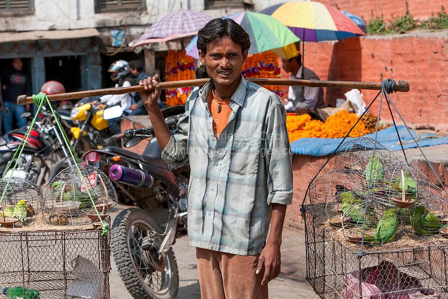 Nepal, Kathmandu.  Street Vendor Selling Parrots and Lovebirds, Durbar Square.