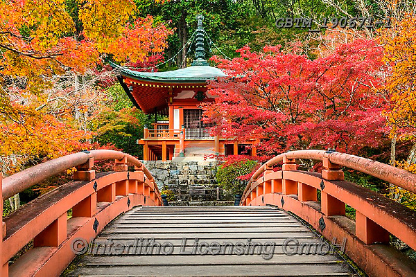 Tom Mackie, LANDSCAPES, LANDSCHAFTEN, PAISAJES, photos,+Adashino Nembutsu-ji Temple, Asia, Bentendo Hall, Daigo-ji Temple, Japan, Japanese, Tom Mackie, Worldwide, autumn, autumnal,+bridge, bridges, building, buildings, color, colorful, colour, colourful, fall, footpath, garden, gardens, horizontal, horizo+ntals, landmark, landmarks, maple, nobody, pagoda, path, pathway, pathways, red, seasons, shrine, temple, tourist attraction,+tree, trees, world wide, world-wide,Adashino Nembutsu-ji Temple, Asia, Bentendo Hall, Daigo-ji Temple, Japan, Japanese, Tom+,GBTM190671-1,#l#, EVERYDAY