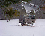 Montana & Wyoming Photos
