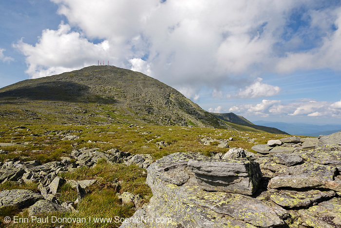 Mount Washington from along the Davis Path in Sargent's Purchase in the New Hampshire White Mountains.