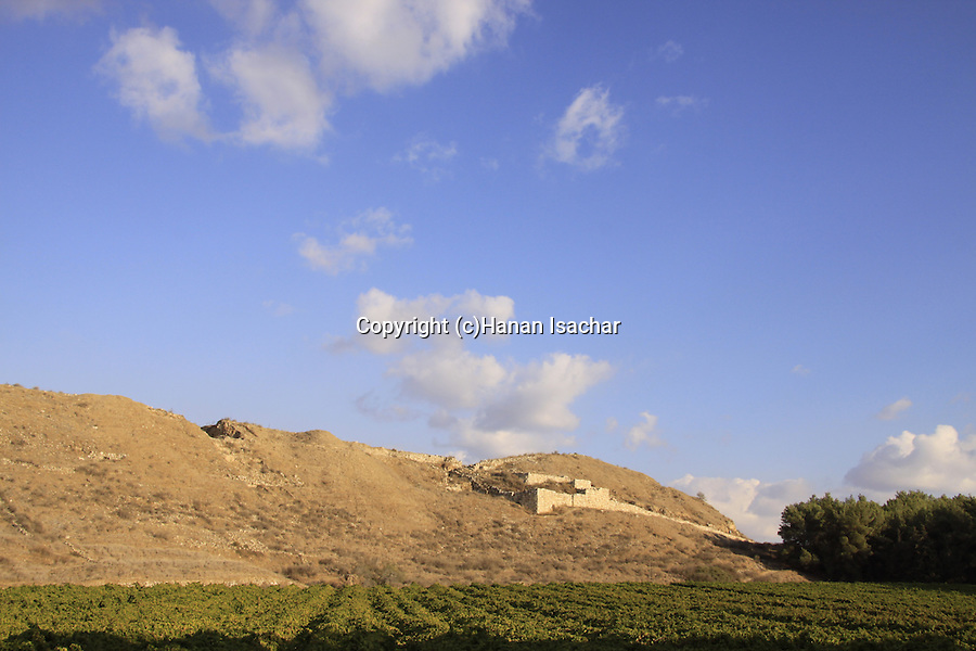 Israel, Shephelah, a view of Tel Lachish from the west .