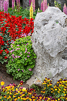 Yangzhou, Jiangsu, China.  Flowers and Rock Formation in Slender West Lake Park Garden.