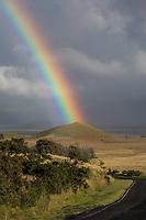 Rainbow Land: A powerful rainbow seems to touch a pu'u (hill or mound) near a road going through Kamuela (a.k.a. Waimea), Big Island of Hawai'i.